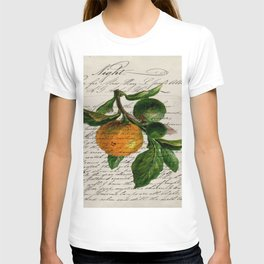 Shabby French botanical print tangerine clementine mandarin orange T-shirt