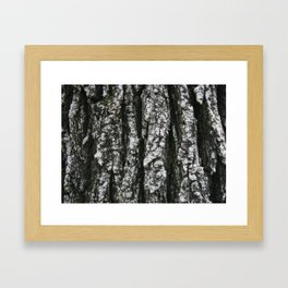 Tree texture Framed Art Print