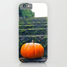 Stairway pumpkin iPhone 6s Slim Case
