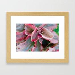 Tea Leaf Bloom Framed Art Print