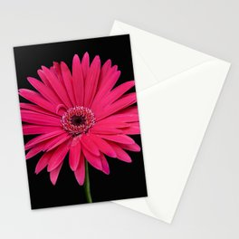 One pink flower Stationery Cards