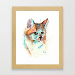 Bicolor cat portrait Framed Art Print