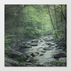 Misty Forest Stream Canvas Print