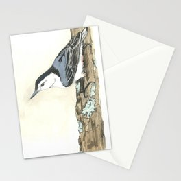 White-Breasted Nuthatch - Watercolor Stationery Cards