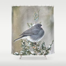 Tip Top Junco Shower Curtain
