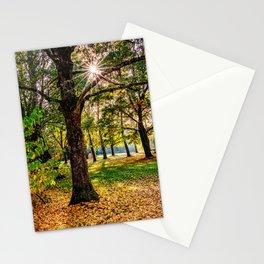 Concept nature : Manuf modus ad lacum Stationery Cards
