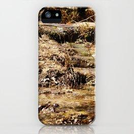 Little Pedernales Flowing iPhone Case