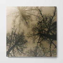 Guarding Pine Metal Print