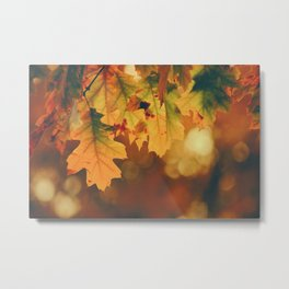 Autumn Leaf (Color) Metal Print