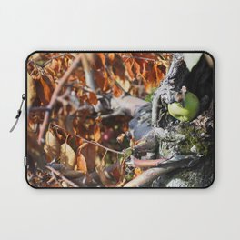 Fallen Apple Laptop Sleeve
