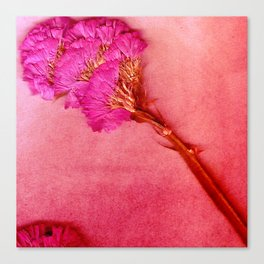 PinkForest Canvas Print