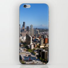 From the Needle iPhone & iPod Skin