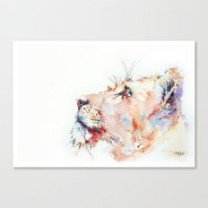 I belong in Africa ... Lion Canvas Print