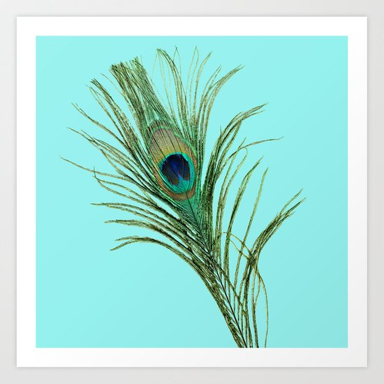 Peacock Feather on Blue Background Art Print