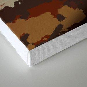 VISITOR C Canvas Print