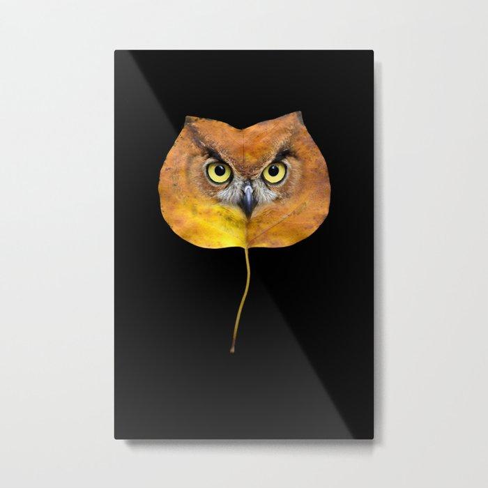 Autumn Owl-4 Metal Print