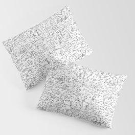 Physics Equations on Whiteboard Pillow Sham