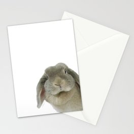 Holland Lop Rabbit Stationery Cards