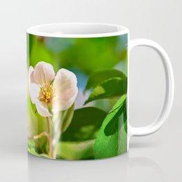 Pink crabapple flower, green leaves. Sunny day Coffee Mug