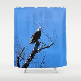 Clear Sight (Bald Eagle) Shower Curtain