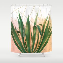 Cactus with geometric Shower Curtain