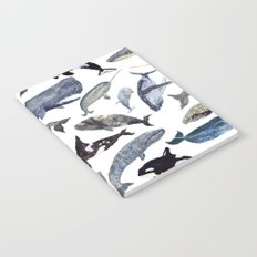 Whale Song Notebook