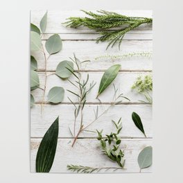 Green Botanical Flowers Poster