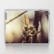 Raspberry sprout Laptop & iPad Skin