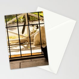 Lexi & Phil Stationery Cards