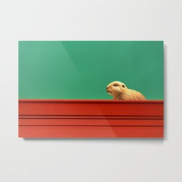 beaver on colorful wall Metal Print