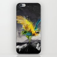 parrot iPhone & iPod Skins featuring Parrot by Elias Klingén