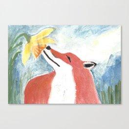 Fox and Daffodil Canvas Print