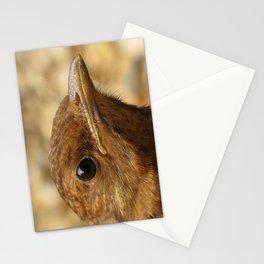 Ben Stationery Cards