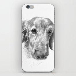 Dogface iPhone Skin