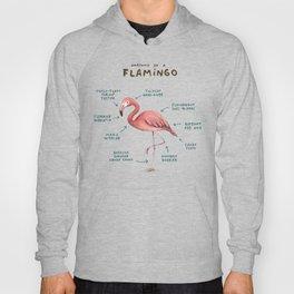 Anatomy of a Flamingo Hoody