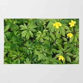 Yellow flowers on Green Rug
