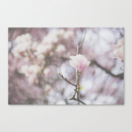 . perfectly imperfect . Canvas Print