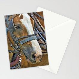 Belgian Draft Stationery Cards