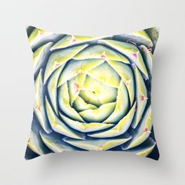 Beautiful Sempervivum succulent plant shapes macro close-up in selective focus Throw Pillow