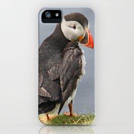 [impressions of scotland] - puffin trilogie no. 2 iPhone Case