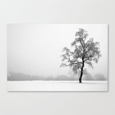 Solitary Tree in Winter Canvas Print