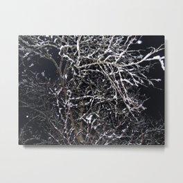 Skeleton of a Tree Metal Print