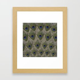 Peacock tail Framed Art Print