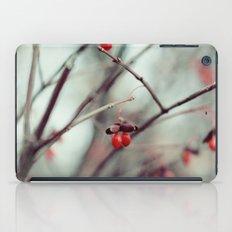 December Dream iPad Case