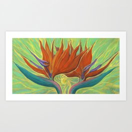 Strelitzia / Bird of Paradise, Tropical Flower, Floral Painting Art Print