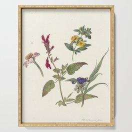 Pieter Ernst Hendrik Praetorius - Studies of wild flowers (1837) Serving Tray