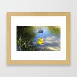 Dutch Tulips  Framed Art Print