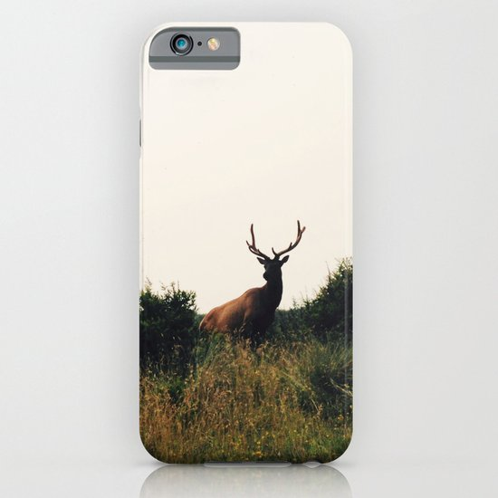 Prairie Creek Elk iPhone & iPod Case