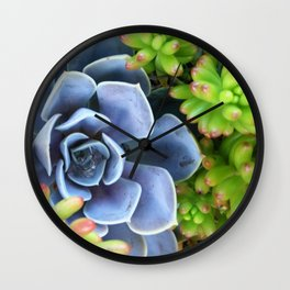 Succulent Bunch Wall Clock