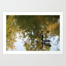 Autumn Pond Art Print